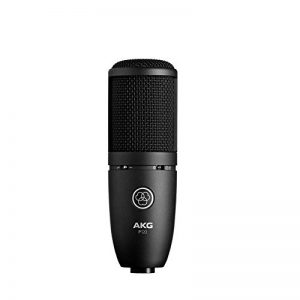 AKG P120 Microphone de Studio Statique Cardioïde Noir de la marque AKG image 0 produit