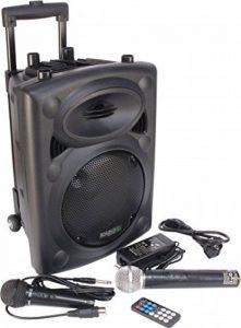 Ibiza Port 8 VHF - Enceinte sono portable - Haut parleur avec micro sans fil et micro fil et lecteur MP3 (USB SD, chassis ABS, batterie longue durée) de la marque Ibiza image 0 produit