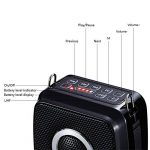 micro amplificateur de voix sans fil TOP 5 image 4 produit
