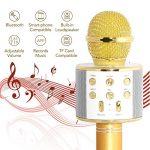 micro sans fil chant TOP 5 image 3 produit