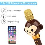 Microphone Karaoké Enfant Sans Fil, 3 en 1 Bluetooth Micro Karaoké Cartoon Portable Chanter Enregistrement pour Tablette/PC/ iPhone/Android - Marron de la marque FOOING image 1 produit