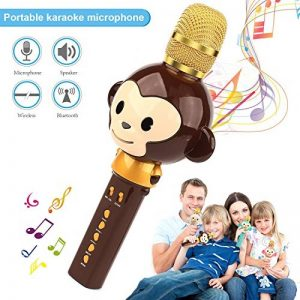 Microphone Karaoké Enfant Sans Fil, 3 en 1 Bluetooth Micro Karaoké Cartoon Portable Chanter Enregistrement pour Tablette/PC/ iPhone/Android - Marron de la marque FOOING image 0 produit