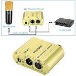 Neewer Canal Unique 48V Alimentation Fantôme Pré-amplificateur Compact Multi-fonction avec Adaptateur pour Tous Types de Microphone à Condensateur et Materiel d'Enregistrement Musical (Or) de la marque Neewer image 1 produit