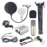Neewer NW-700 Kit de Microphone à Condensateur - Micro 48V Alimentation Fantôme Noir, NW-35 Support de Bras à Ciseaux avec Montage Choc et Filtre Pop, XLR Câble Mâle à Femelle (Argenté) de la marque Neewer image 1 produit