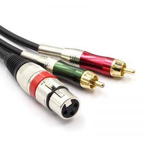 SiYear Câble adaptateur répartiteur Y XLR femelle vers 2 prises phono RCA femelle 3 broches vers câble audio stéréo mâle (1,5 m) de la marque SiYear image 0 produit